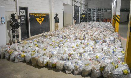 A más de 363 millones de pesos, asciende el valor de los estupefacientes incinerados por la FPA